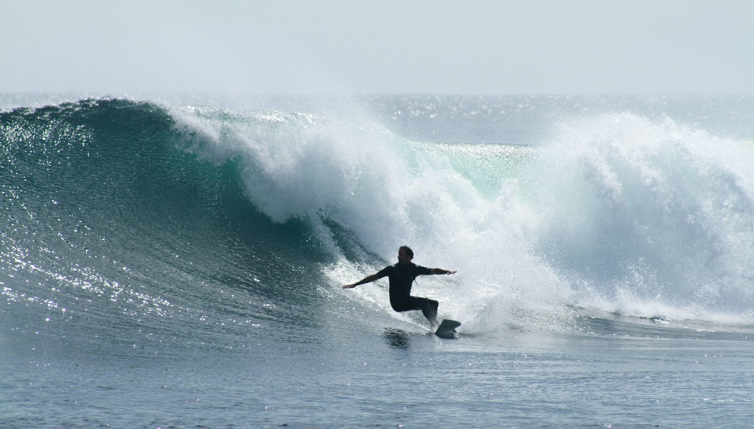 Surfing Hollow Trees in Mentawai